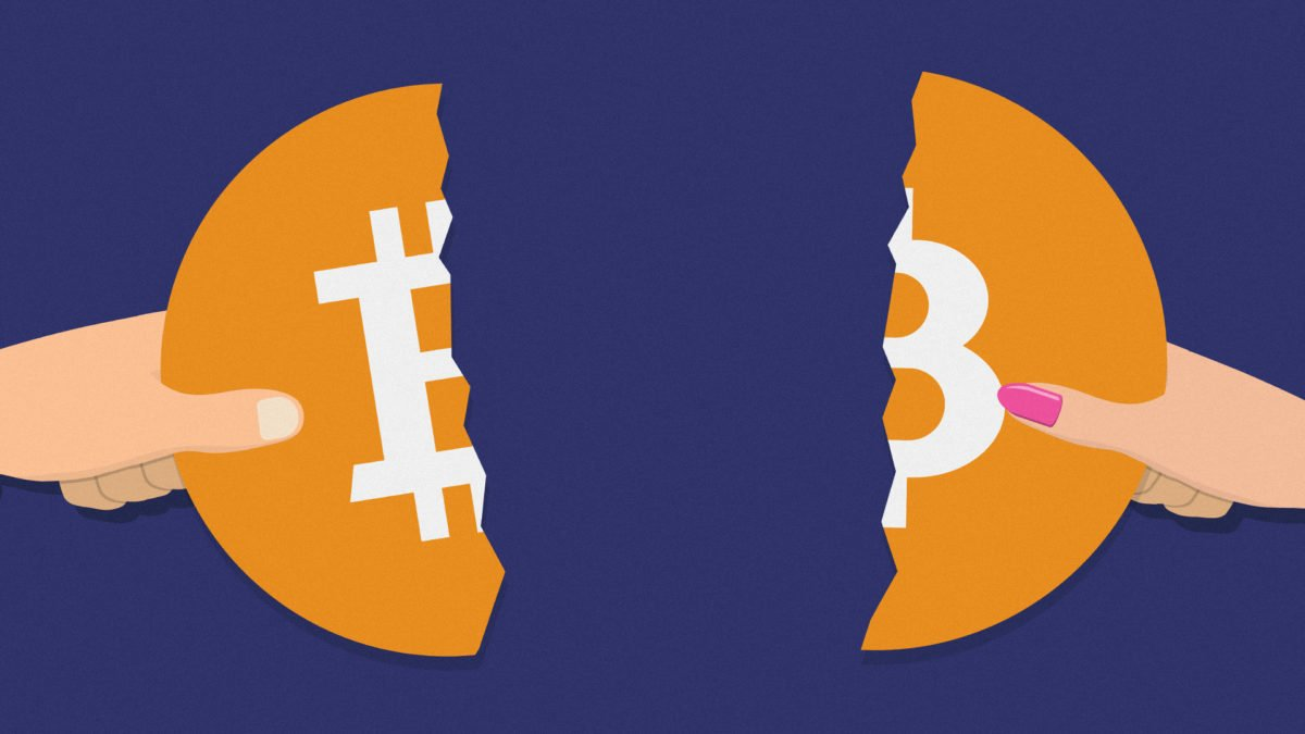 The Buttcoin Standard: the problem with Bitcoin - The Block