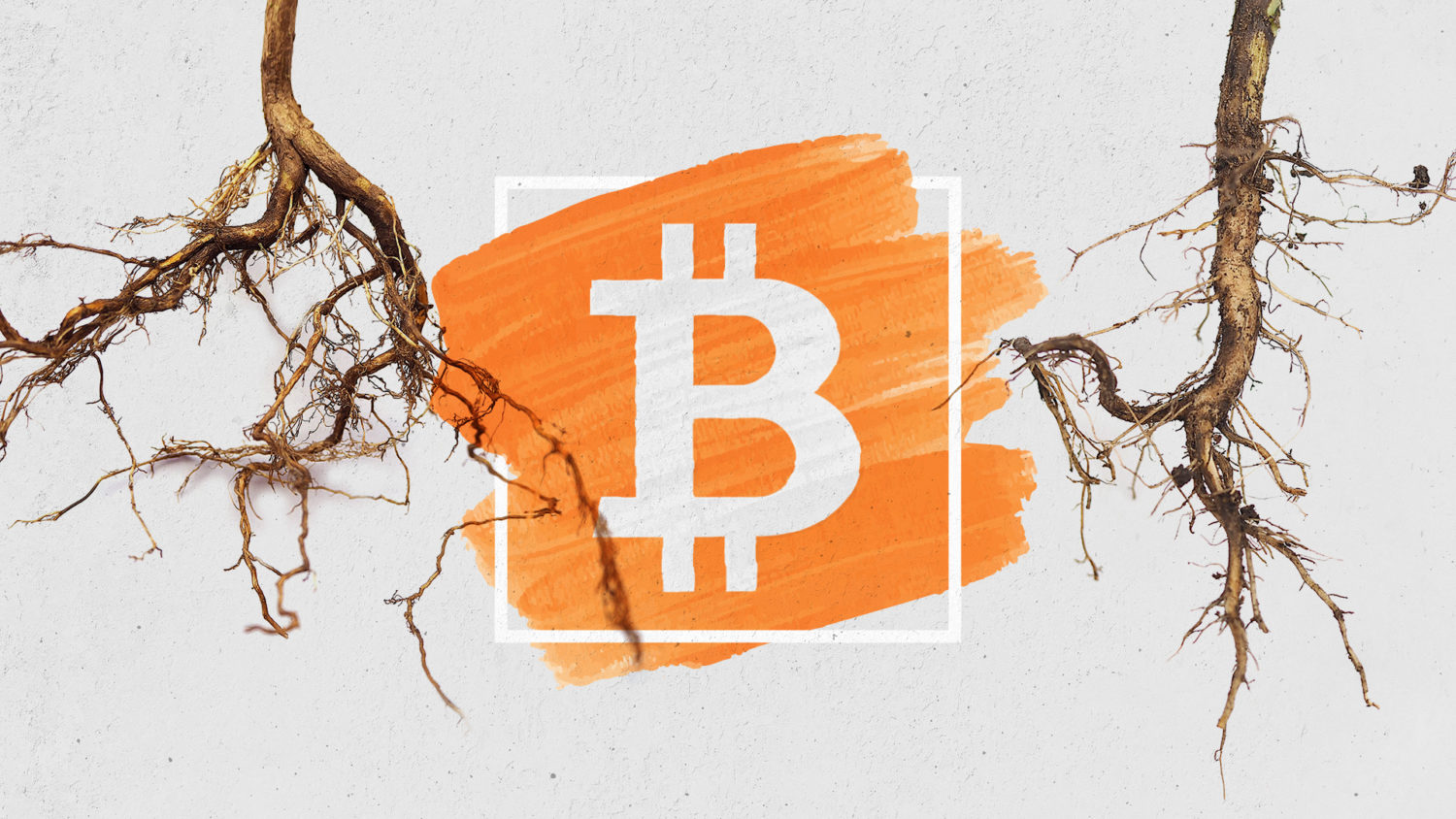 Taproot, Bitcoin's long-in-the-making upgrade, achieves activation lock-in