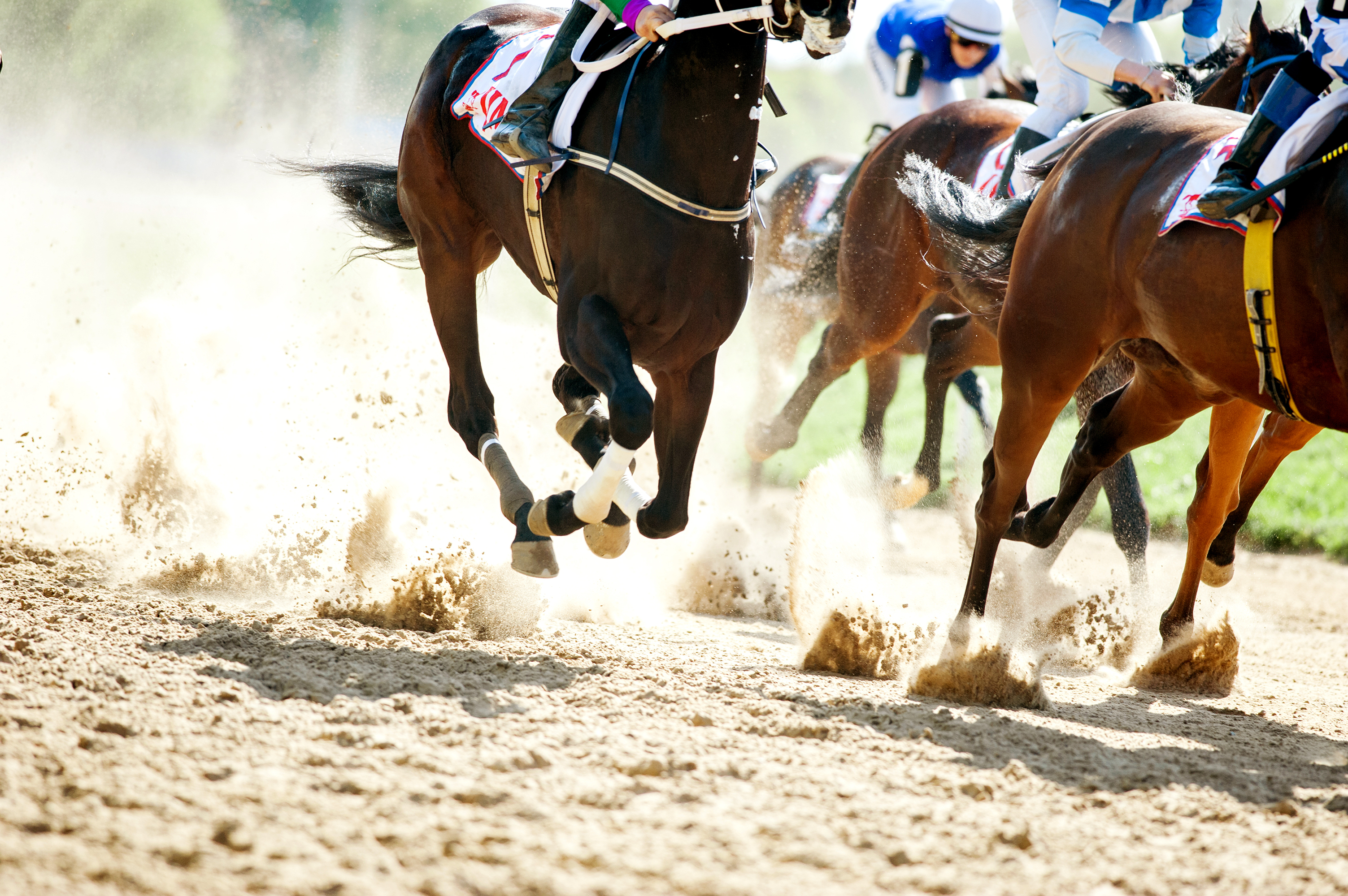 A startup that lets you race NFT horses has raised $20 million from a16z, TCG