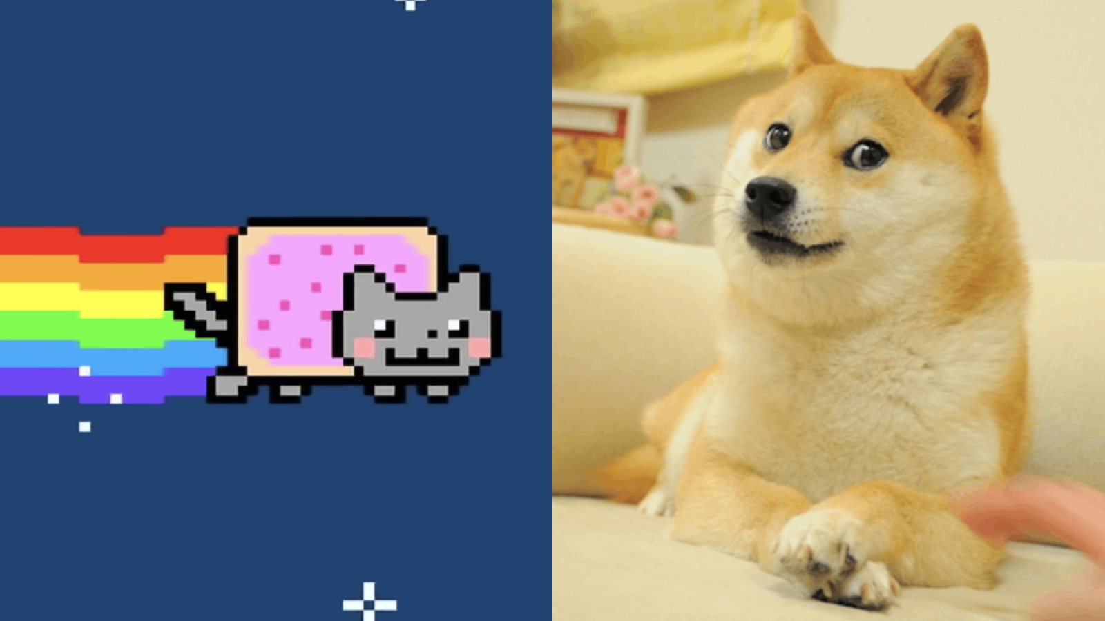 Weekend wrap: Nyan cats, fractionalized dogs and cartoon lobsters